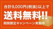 合計9,000円(税抜)以上で送料無料!!